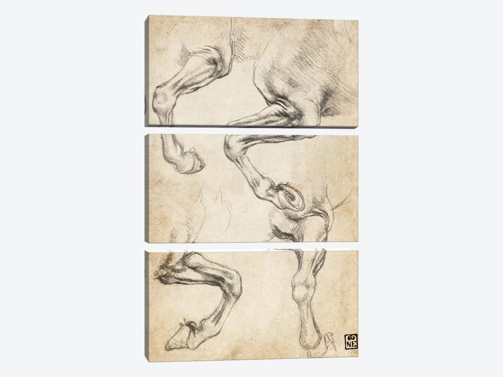 Studies of Horse's Legs by Leonardo da Vinci 3-piece Art Print