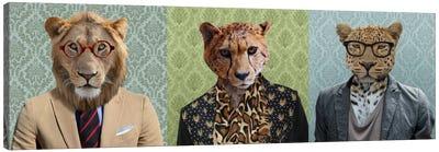 Dressed Up Wild Cat Trio Canvas Print #15439