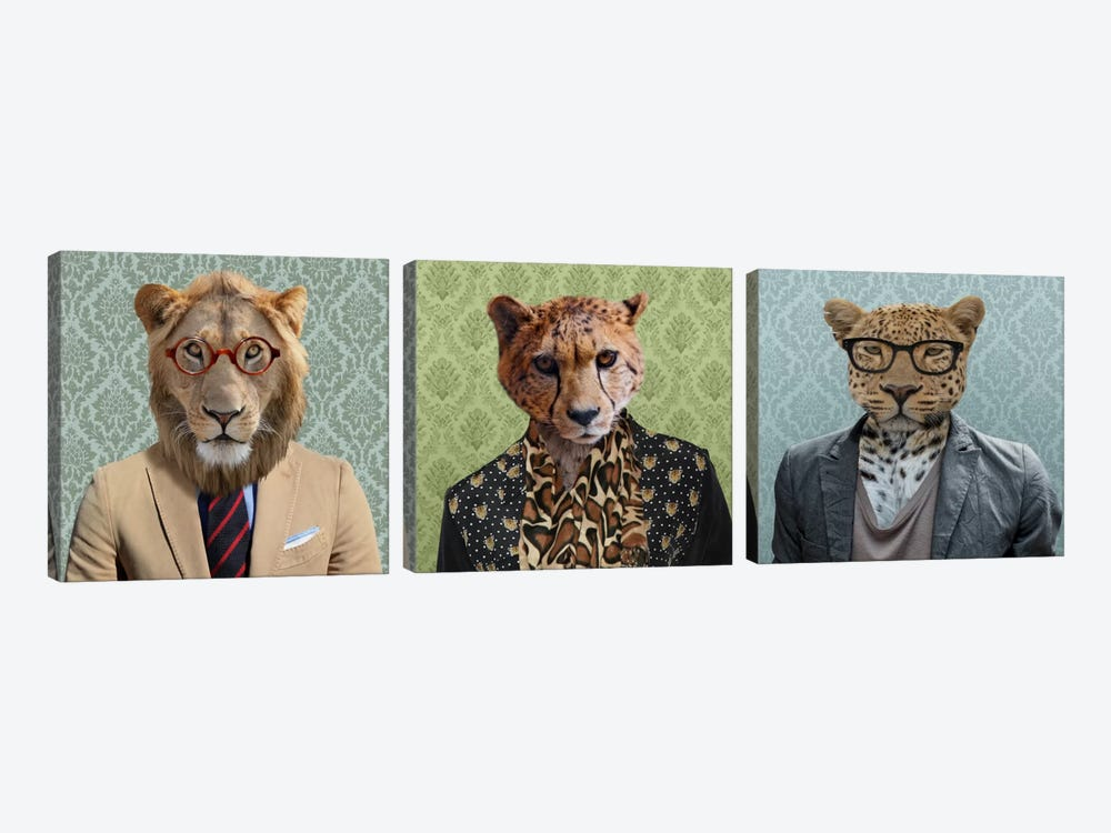 Dressed Up Wild Cat Trio by 5by5collective 3-piece Canvas Print