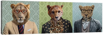 Dressed Up Wild Cat Trio Canvas Art Print