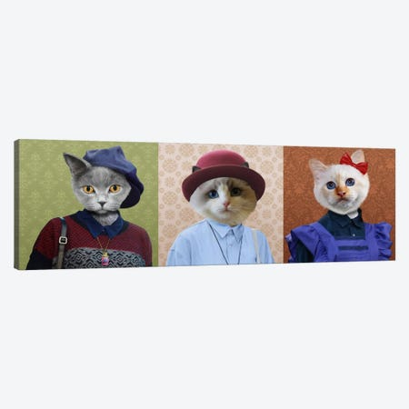 Dressed Up Cat Trio 3-Piece Canvas #15446} by 5by5collective Canvas Print
