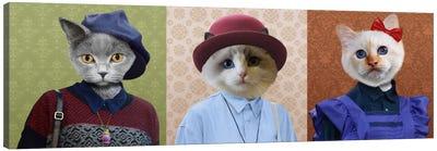 Dressed Up Cat Trio Canvas Art Print