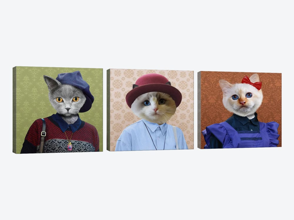 Dressed Up Cat Trio by 5by5collective 3-piece Art Print