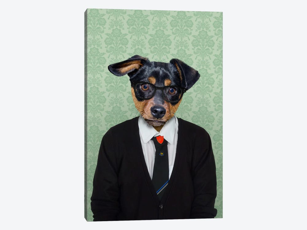 Daniel the Doberman Pinscher by 5by5collective 1-piece Canvas Art