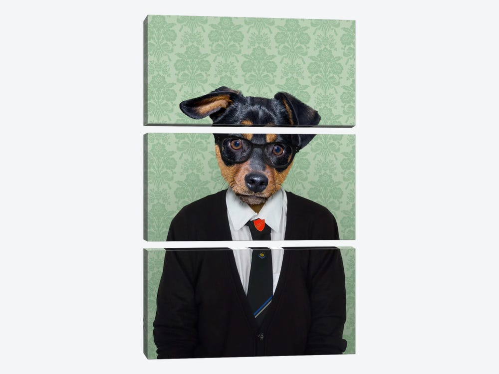 Daniel the Doberman Pinscher by 5by5collective 3-piece Canvas Wall Art