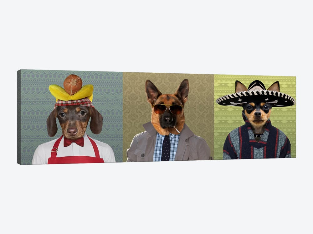 Dogs Dressed Down Trio 2 by 5by5collective 1-piece Canvas Wall Art