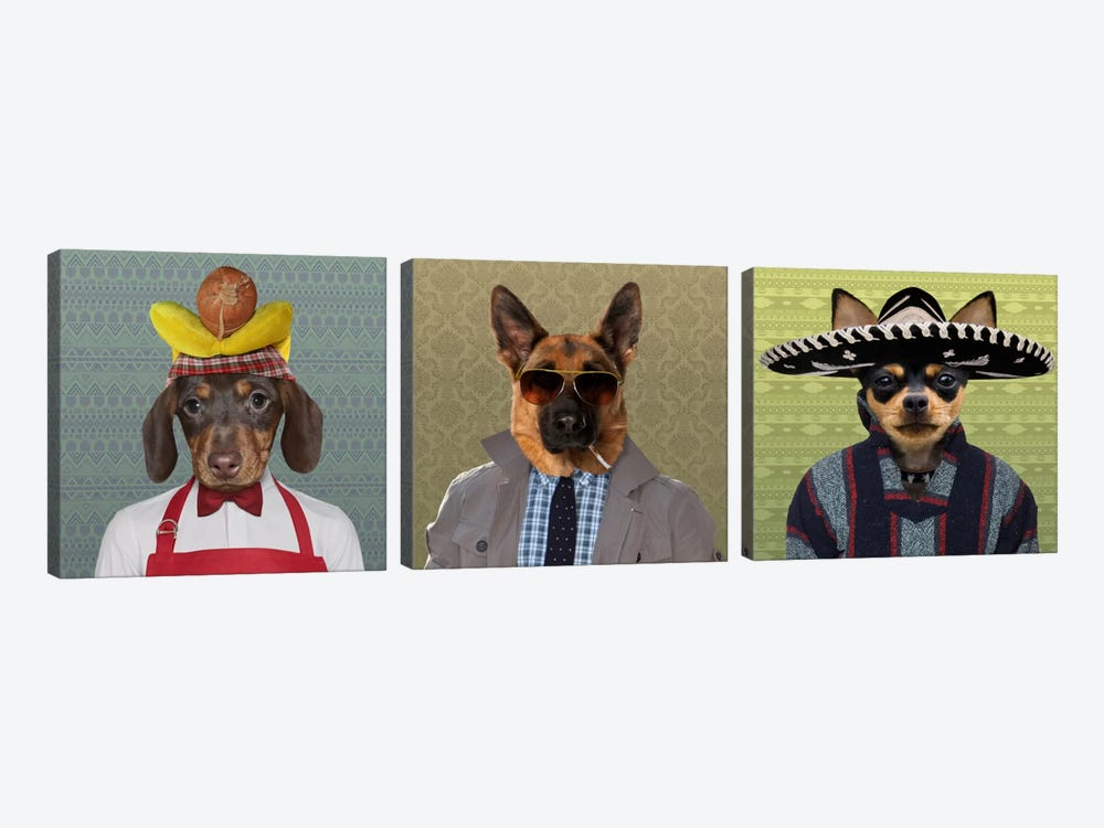 Dogs Dressed Down Trio 2 by 5by5collective 3-piece Canvas Artwork
