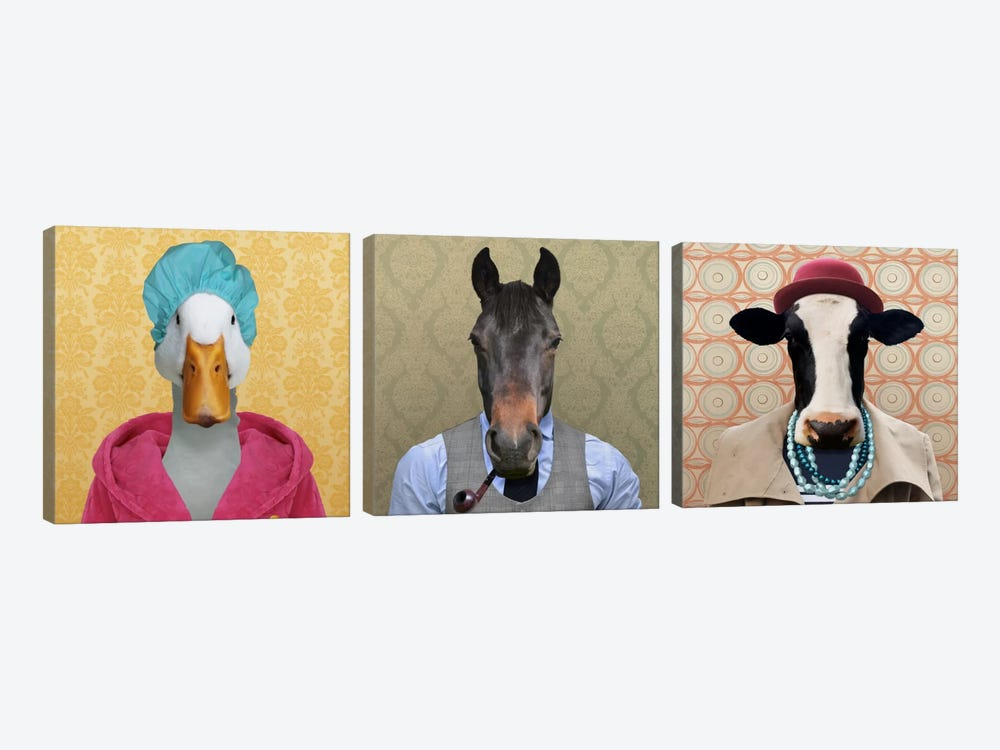 Farm Animals Dressed Up by 5by5collective 3-piece Canvas Print