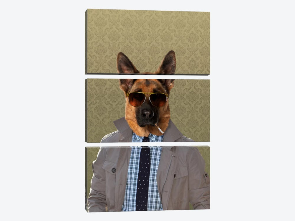Guy the German Shepherd by 5by5collective 3-piece Canvas Artwork