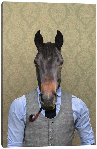 Horace the Horse Canvas Art Print