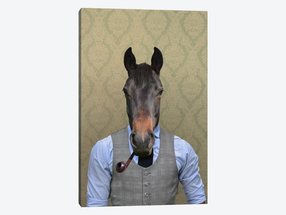 Horace the Horse by 5by5collective 1-piece Canvas Art