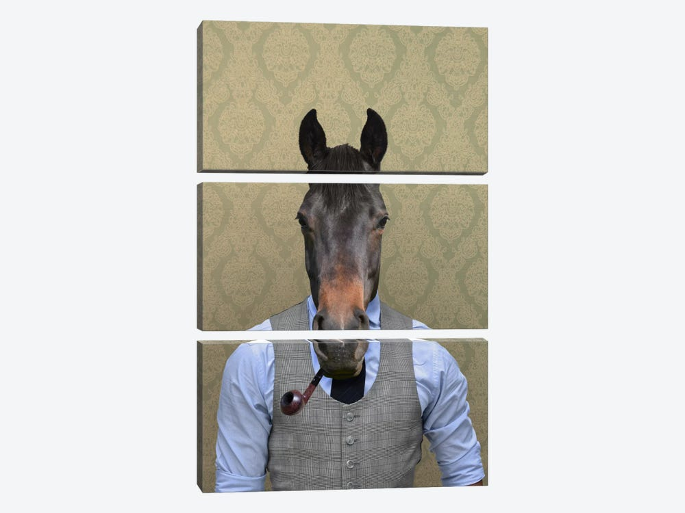 Horace the Horse by 5by5collective 3-piece Canvas Art