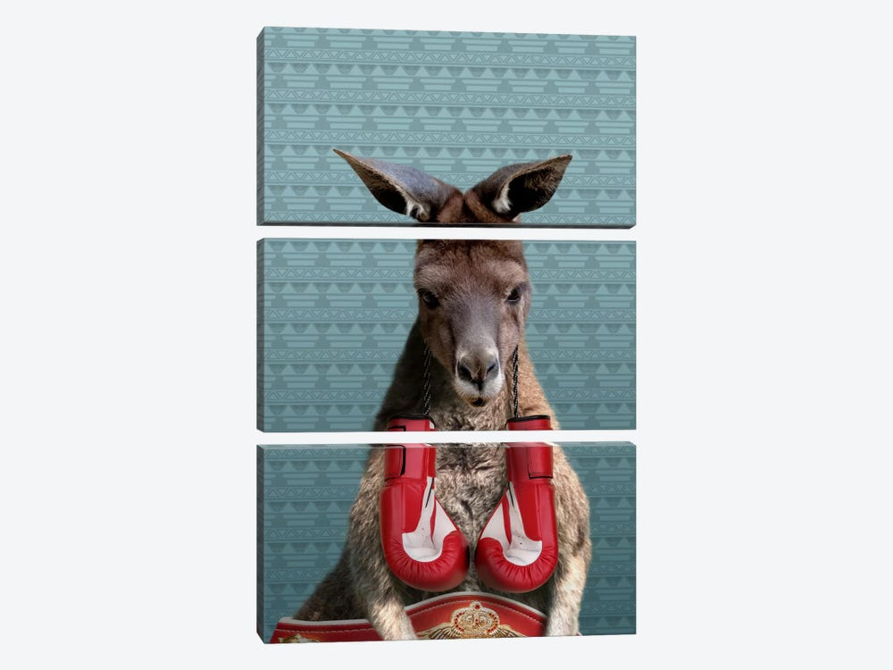 Bo the Kangaroo by 5by5collective 3-piece Canvas Art Print