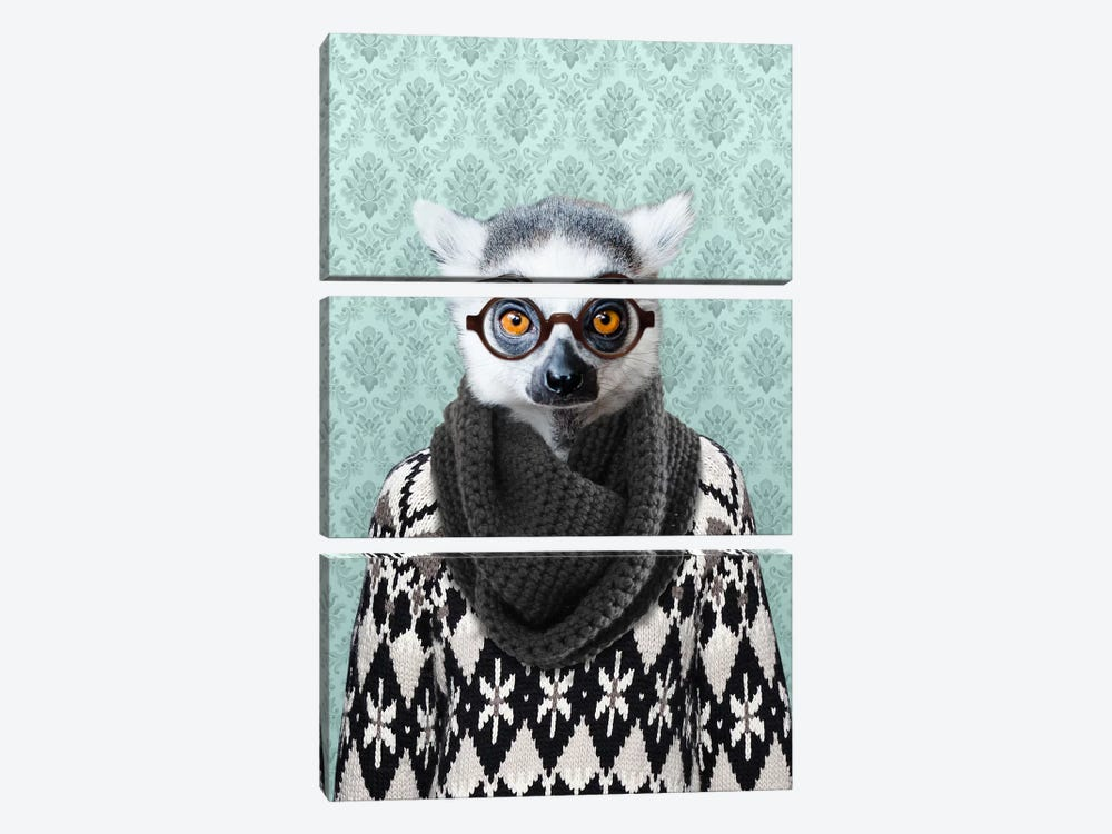 Louie the Leemur by 5by5collective 3-piece Canvas Print