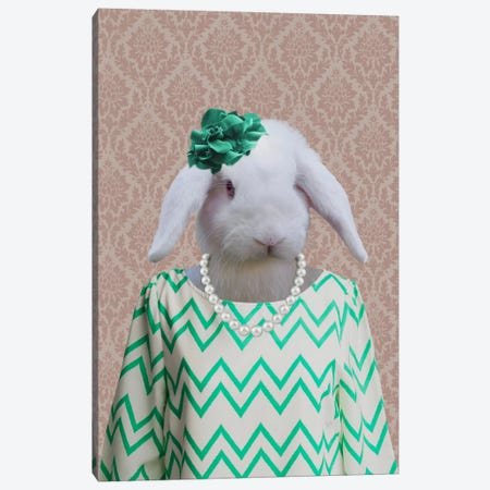 Rachel the Rabbit Canvas Print #15486} by 5by5collective Canvas Print