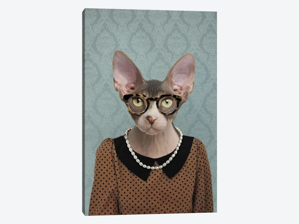 Shelly the Sphynx Cat by 5by5collective 1-piece Canvas Art