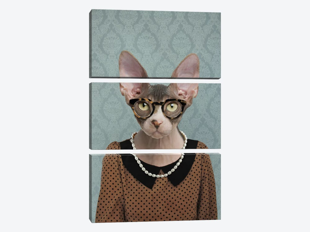 Shelly the Sphynx Cat by 5by5collective 3-piece Canvas Artwork