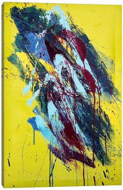 Somber #1 Canvas Art Print
