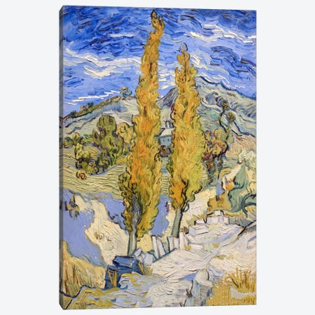The Poplars at Saint-Remy Canvas Print #1704} by Vincent van Gogh Canvas Artwork
