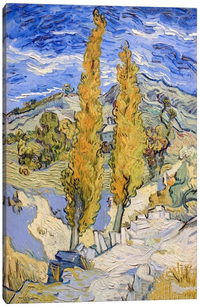 The Poplars at Saint-Remy Canvas Art Print