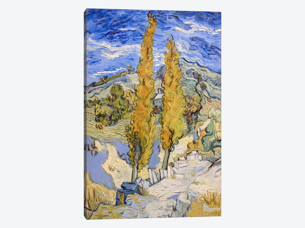 The Poplars at Saint-Remy by Vincent van Gogh 1-piece Art Print