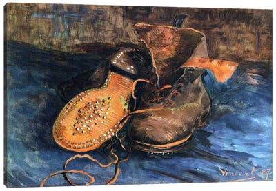 A Pair of Shoes Canvas Print #1742