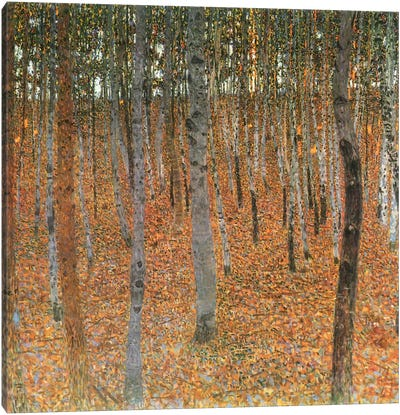 Forest of Beech Trees by Gustav Klimt Canvas Art Print