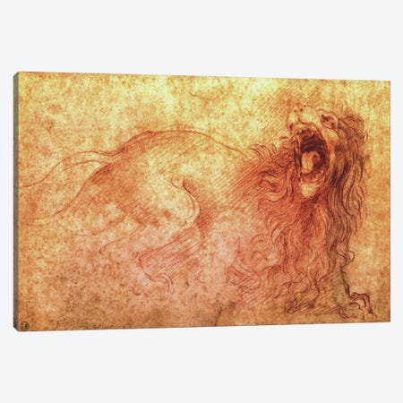 Sketch of a Roaring Lion Canvas Print #1845} by Leonardo da Vinci Canvas Art Print