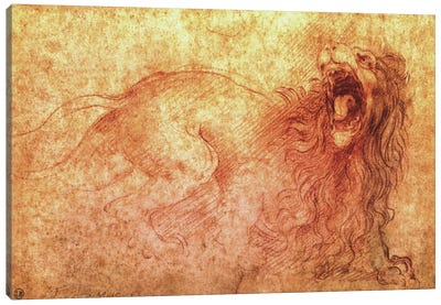 Sketch of a Roaring Lion by Leonardo da Vinci Canvas Art Print