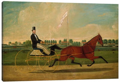 Trotting Horse Canvas Art Print