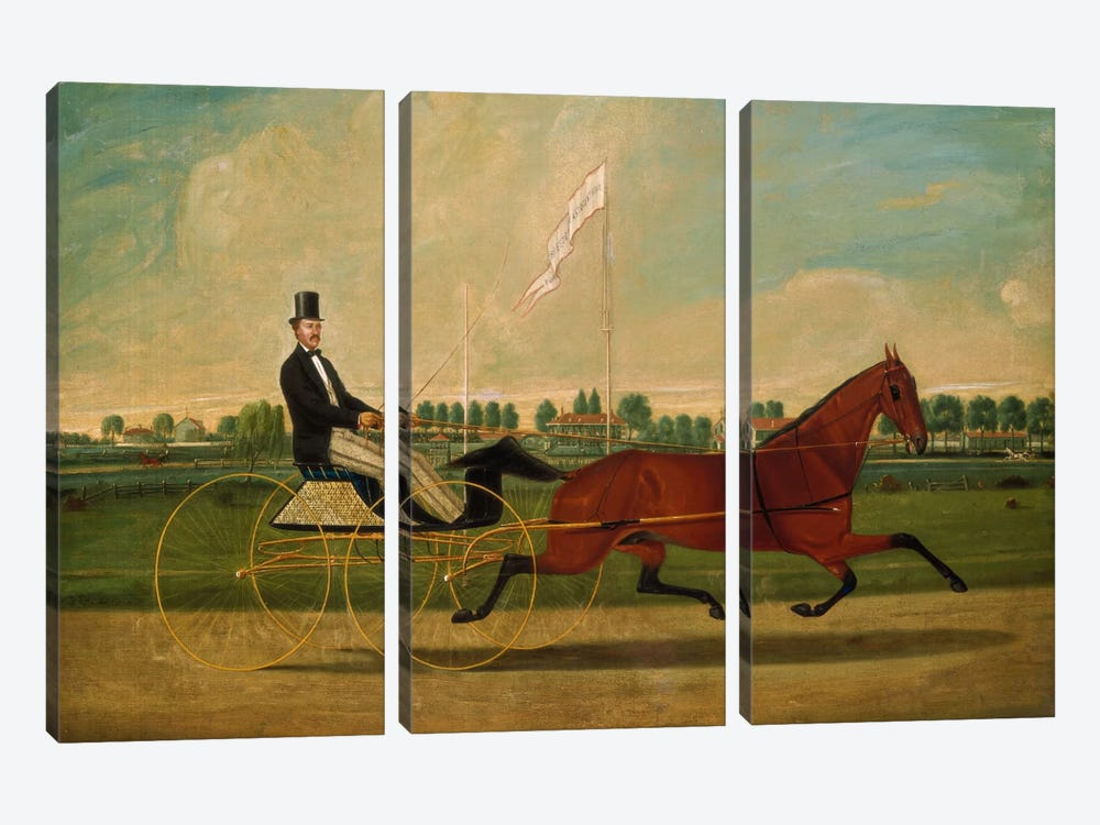 Trotting Horse by Charles Humphreys 3-piece Canvas Wall Art