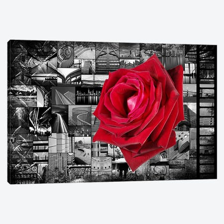 Rose In City Canvas Print #207} by iCanvas Art Print