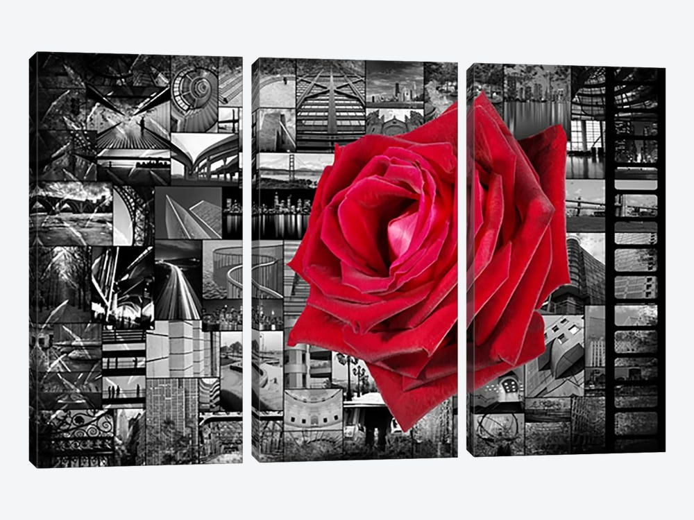 Rose In City by iCanvas 3-piece Canvas Art Print