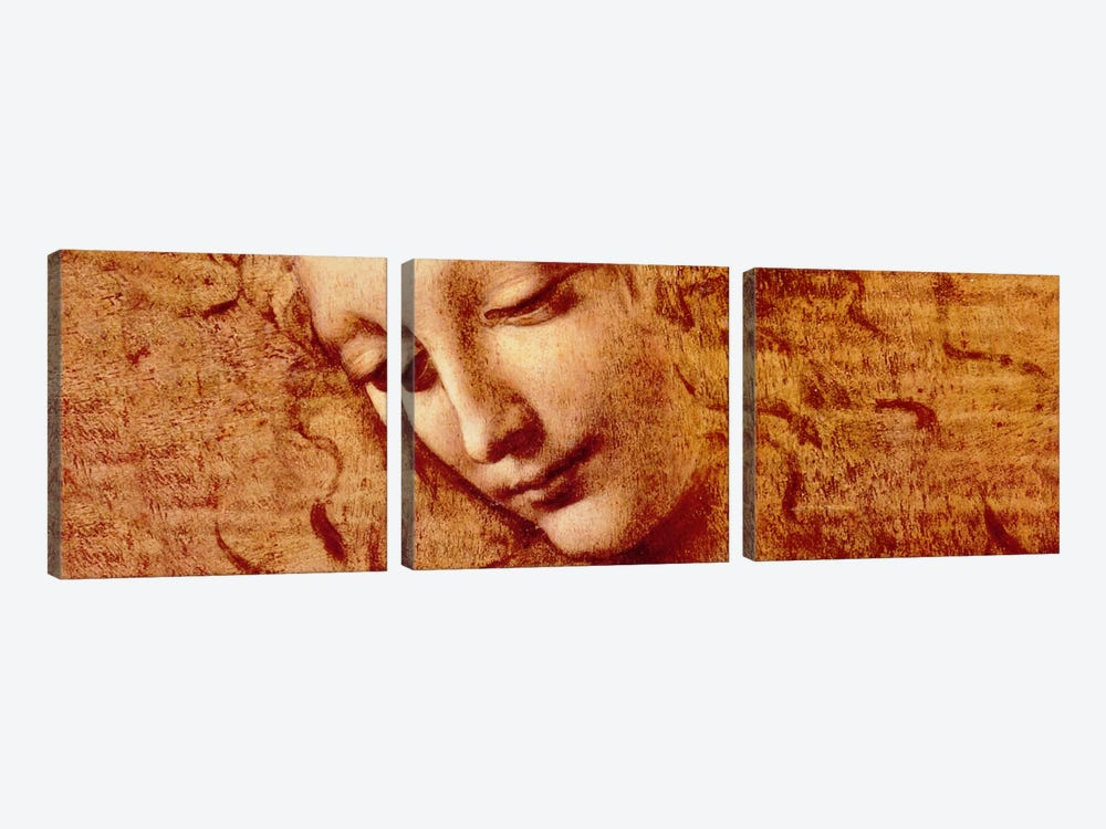 Female Head by Leonardo da Vinci 3-piece Canvas Wall Art