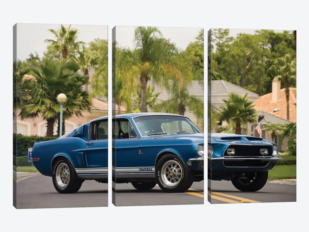 1968 Shelby Gt 500 Kr Fastback 3-piece Canvas Art
