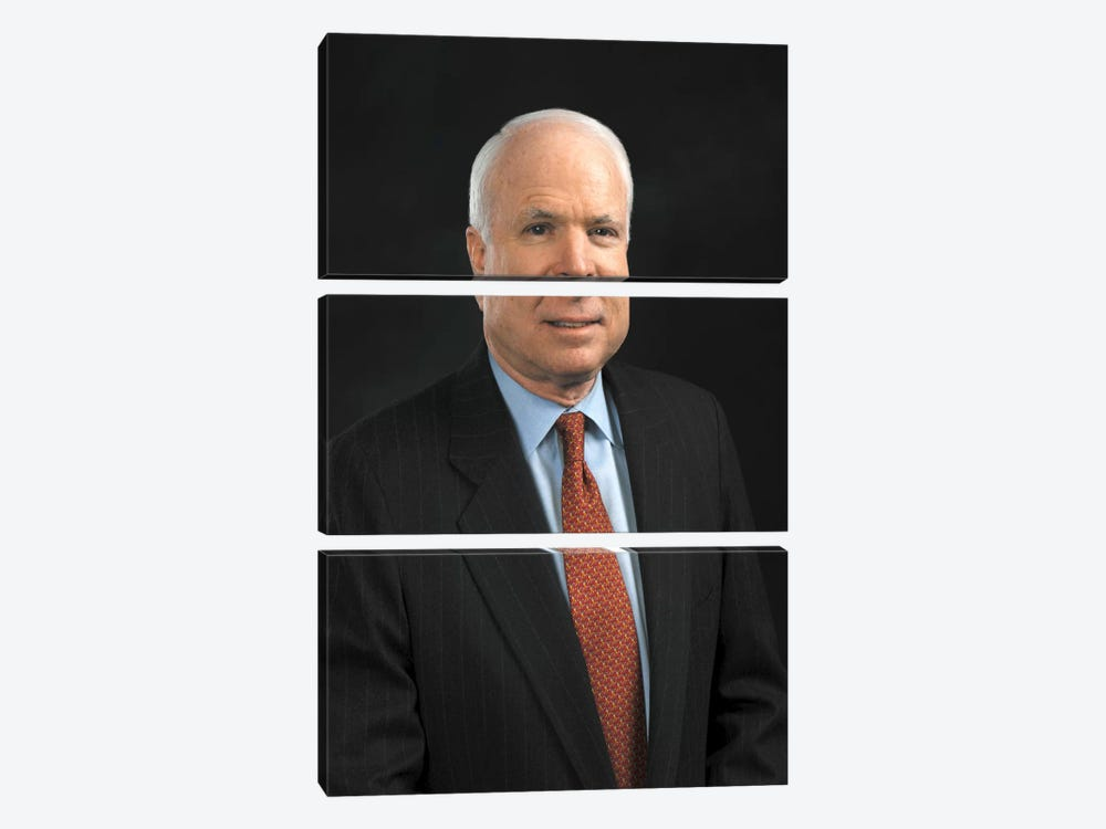 John Mccain Portrait 3-piece Canvas Artwork