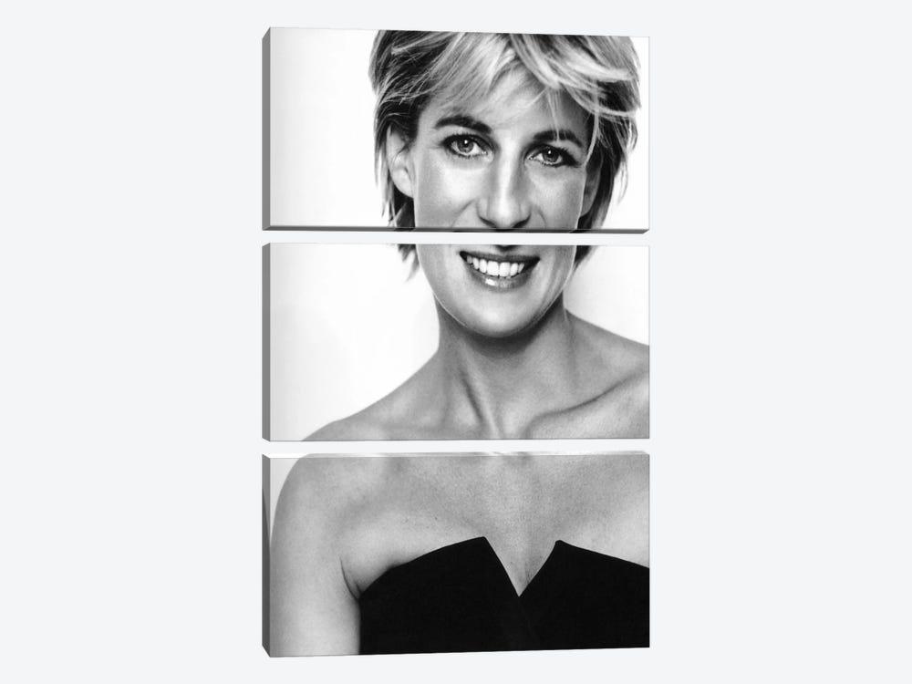 Princess Diana Portrait by Unknown Artist 3-piece Canvas Art