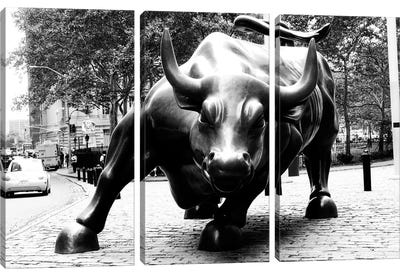 Wall Street Bull Black & White Canvas Art Print