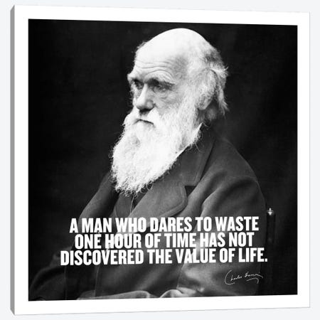 Charles Darwin Quote Canvas Print #4034} by Unknown Artist Canvas Artwork