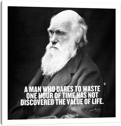 Charles Darwin Quote Canvas Art Print