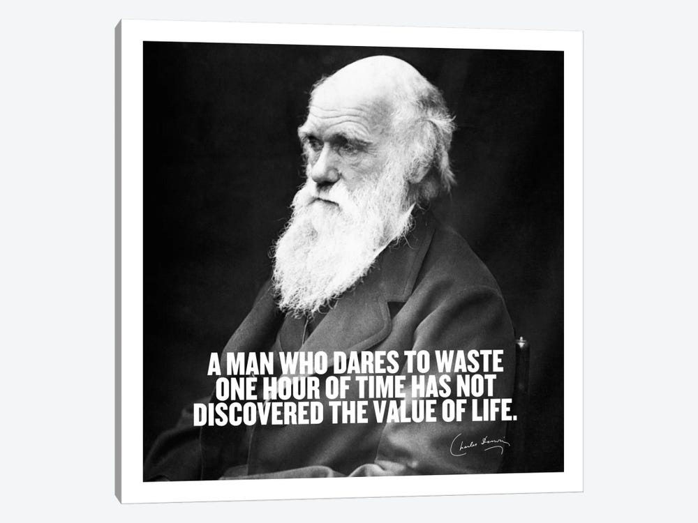 Charles Darwin Quote by iCanvas 1-piece Canvas Print