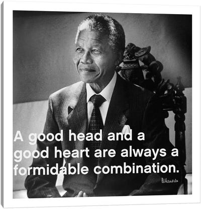 Nelson Mandela Quote Canvas Print #4138