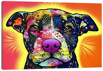 Love A Bull Canvas Art Print
