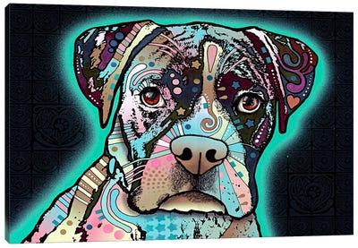 Love Thy Boxer Canvas Art Print