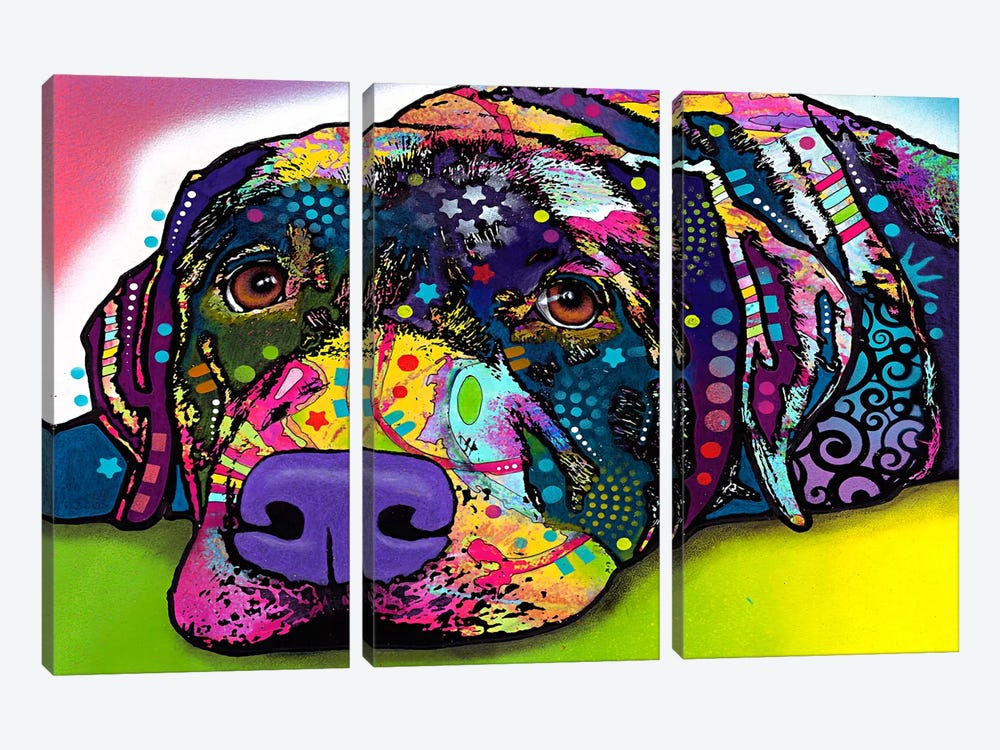 Savvy Labrador by Dean Russo 3-piece Canvas Print