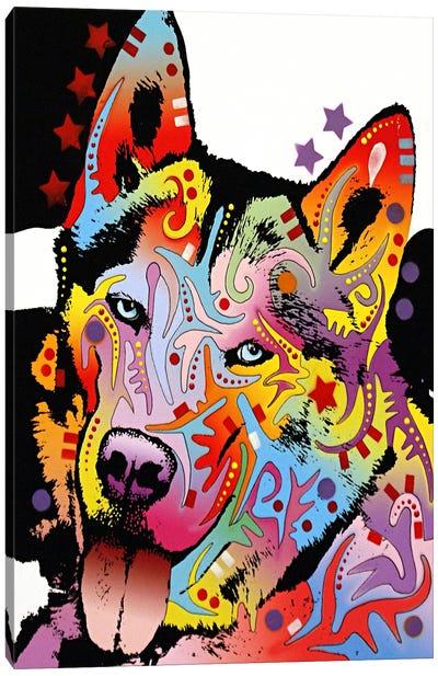Siberian Husky Canvas Print #4209