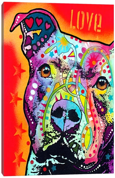 Thoughtful Pit Bull Canvas Art Print