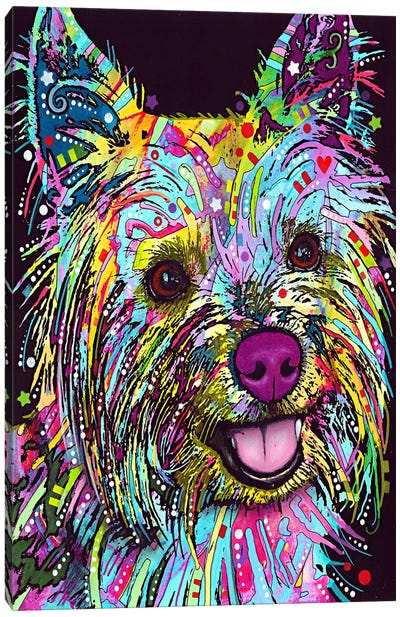 Yorkie by Dean Russo Canvas Wall Art