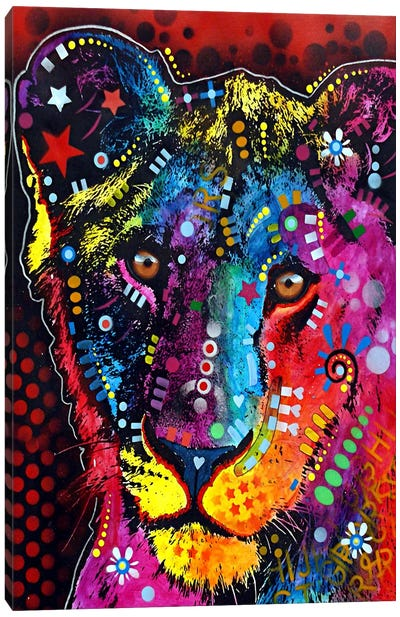 Young Lion Canvas Art Print