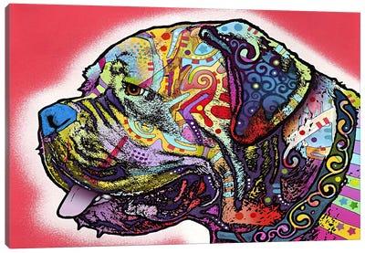 Profile Mastiff Canvas Art Print